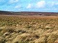Keighley Moor - geograph.org.uk - 73802.jpg