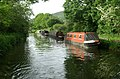 Kennet and Avon Canal above Claverton - geograph.org.uk - 182579.jpg
