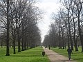 Kensington Gardens - geograph.org.uk - 1232684.jpg