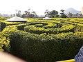 Khanong Phra, Pak Chong District, Nakhon Ratchasima 30130, Thailand - panoramio.jpg
