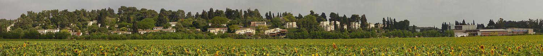 Panorama of Kibbutz Barkai in the Wadi Ara region