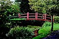 Kildare - Japanese Gardens Bridge of Life - geograph.org.uk - 1605537.jpg