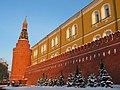 Kremlin Wall in the Alexander Garden - panoramio.jpg