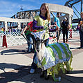 Krewe of Barkus and Meoux Pet Parade, Shreveport, LA Costumed Goat.jpg