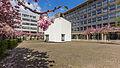 Kubus Haus der Architektur Köln, Josef-Haubrich-Hof, Kirschblüte-9694.jpg