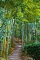 Kyoto, Kodai-Ji, Bamboo - panoramio.jpg