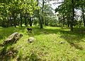 Kyrkkulla gravfält 2012a.jpg