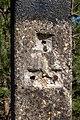Lüdinghausen, Naturschutzgebiet Borkenberge -- 2020 -- 0252.jpg