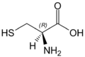 L-Cysteine(wedged bonds).png