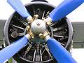 LY-AVI 16.09.2006 10-35-03.JPG
