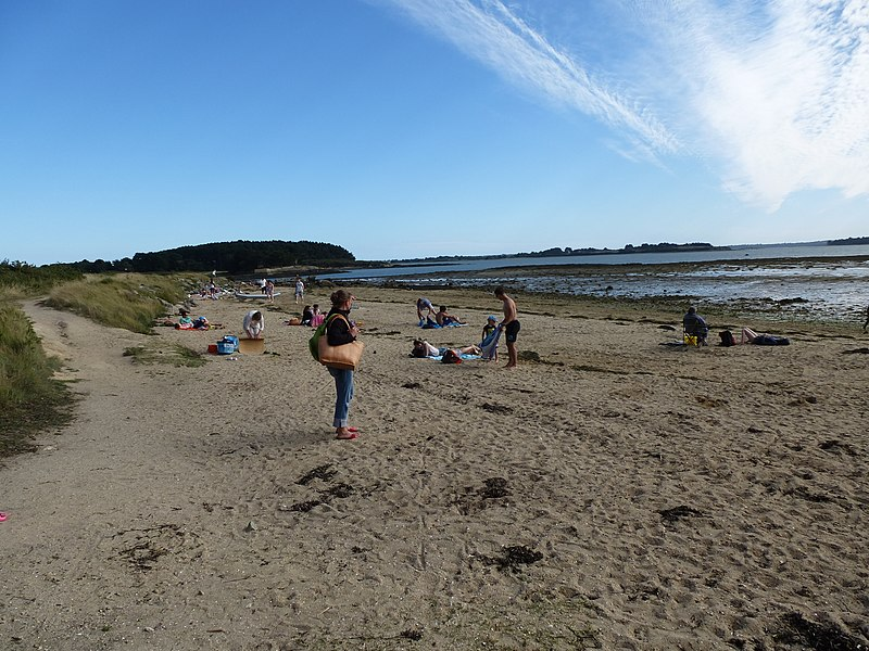 La plage du bill a mousterian