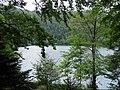 Lac du Ballon (1).jpg