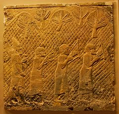 Photograph of a scene from Lachish Relief: Semitic men in Assyrian captivity, playing a later form of the Egyptian lyre