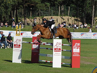 Show jumping - A competitor in a show jumping class