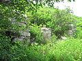 Laika ac Furulgelm Island (6451159395).jpg