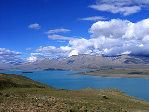 Canterbury-Otago tussock grasslands - Lake Tekapo, in the Mackenzie Basin, is a reservoir surrounded by tussock grassland