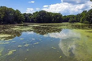 Saw Kill (Hudson River) - Image: Lake along Saw Kill at Red Hook Mills, NY