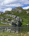 Landscape - Telemark (2702335740).jpg