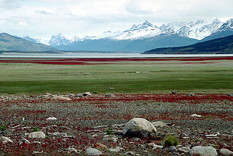 Santa Cruz Province, Argentina - The windswept Patagonian landscape of Santa Cruz.