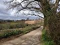 Lane near Ilsington - geograph.org.uk - 1226724.jpg