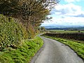 Lane on Y Byrwydd - geograph.org.uk - 600307.jpg