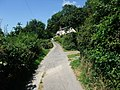 Lane towards Jones' Rough - geograph.org.uk - 902548.jpg