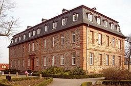 Langenselbold Schloss 20100317