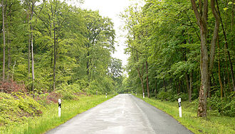 Lappwald - Road in the Lappwald near Bad Helmstedt
