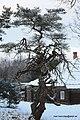 Lasva Parish, Võru County, Estonia - panoramio - Mart Keerutaja (1).jpg