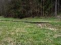 Leinleitertal trocken-20200403-RM-165039.jpg