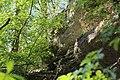 Leitenwälder der Isar 0665.jpg