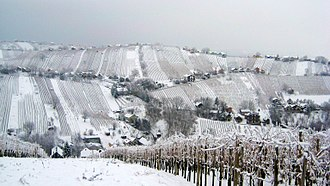 Prekmurje - The Lendava Hills (Lendavske gorice) in winter