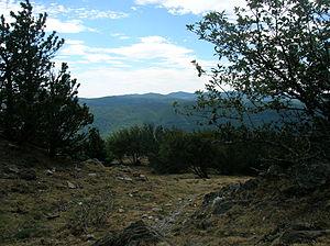Cévennes - Les Cévennes from le mont Aigoual.