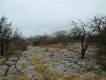 Limestone Pavement on Hutton Roof Crags.jpg