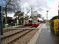 Lloyd Park tram stop - geograph.org.uk - 858848.jpg