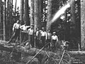 Logging crew, National Lumber and Manufacturing Company, ca 1920 (KINSEY 297).jpeg