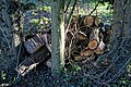 Logpile on Church End, Great Canfield, Essex, England.jpg