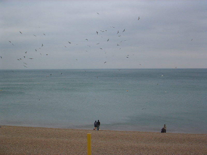 File:London2007brighton img 5631.jpg