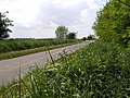 Looking WSW on the minor road - geograph.org.uk - 14123.jpg