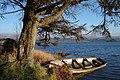 Lough Eske and boat - geograph.org.uk - 1102893.jpg
