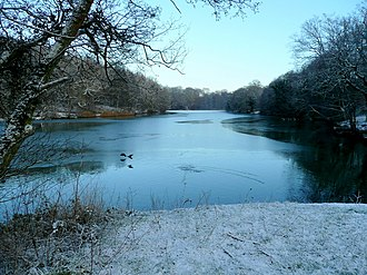 Cannop Ponds - Lower Cannop Pond in the midwinter