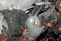 Lussatite, aragonite 1100-1-0826.JPG