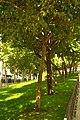 MADRID A.V.U. JARDIN-CINTA S. FRANCISCO EL GRANDE - panoramio (3).jpg