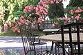 Malacañang Park.JPG