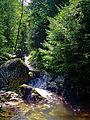 Male Pieniny – rezerwat Wąwóz Homole rzeka Kamionka 02.jpg