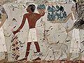 Maler der Grabkammer des Amenemhêt 003.jpg