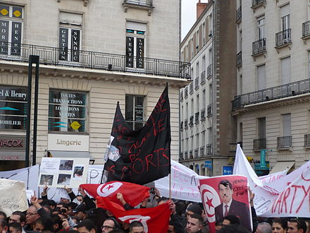 Nantes, France, demonstration in support of the Tunisian protests Manif tunisie Nantes.JPG