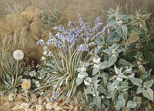 Marian Emma Chase - Wild Flowers (1905)
