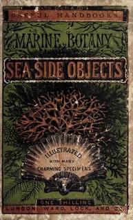 Marine botany Science of ocean plant life