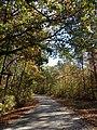 Marion County, AL, USA - panoramio (49).jpg